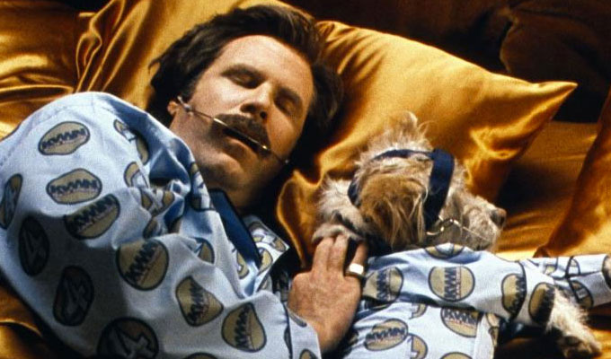 What was the name of Ron Burgundy's dog in Anchorman? | Try our Tuesday Trivia Quiz