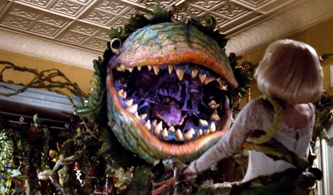 What is the name of the plant in Little Shop Of Horrors? | Try our Tuesday Trivia Quiz, with a Halloween theme