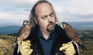 Bill Bailey's Remarkable Guide To British Birds | Book review by Steve Bennett